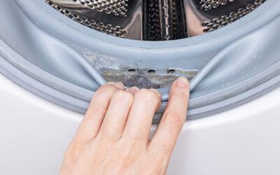 Grzyb w pralce. Domowe sposoby na pleśń w pralce